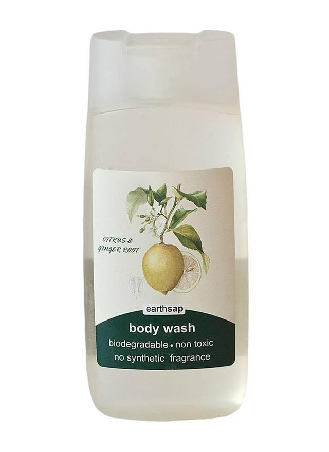 Body Wash – Citrus & Ginger