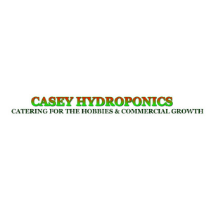 logo casey